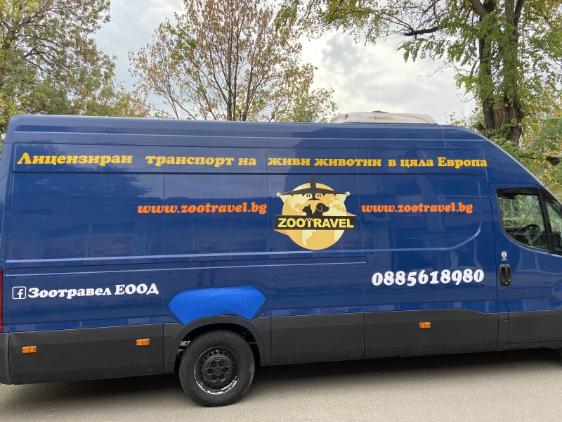 2. Снимка на Лицензиран превоз на домашни любимци в цяла България и Европ